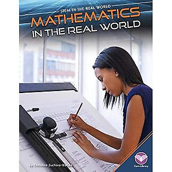 Mathematics in the Real World (Stem in the Real World)