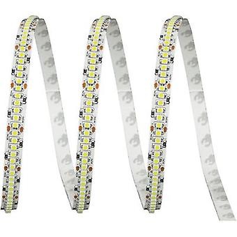 LED strip + solder lugs 24 V 2.5 cm Warm white ledxon LFBHL-SW830-24V-6S42-20 9009143