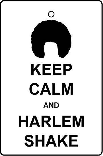Keep Calm And Harlem Shake Car Air Freshener