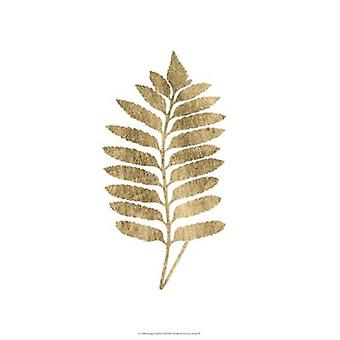 Graphic Gold Fern III Poster Print by Studio W (13 x 19)