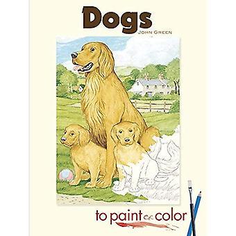 Hunde auf Lack oder Farbe