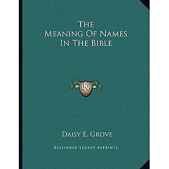 The Meaning of Names in the Bible