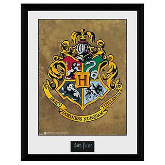 Harry Potter Picture Hogwarts 16 x 12