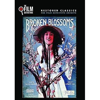 Broken Blossoms [DVD] USA import