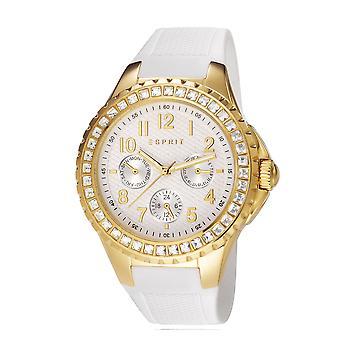 Esprit Ladies Benicia Gold Watch ES106622004