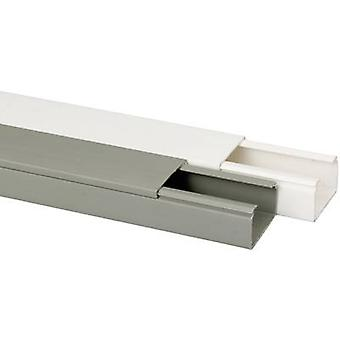 Heidemann 09966 pasacables (L x W x H) 2000 x 40 x 25 mm 1 PC gris