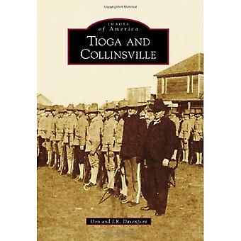 Tioga and Collinsville (Images of America (Arcadia Publishing))