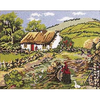 Irland Needlepoint Kit