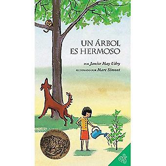 Un Arbol Es Hermoso = A Tree Is Nice