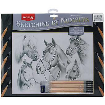 Sketching By Number Kit 11 1 2