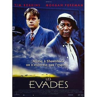 L'affiche du film The Shawshank Redemption (11 x 17)