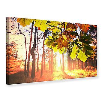 Canvas Print Autumn