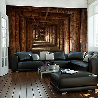 Wallpaper - Wooden passage