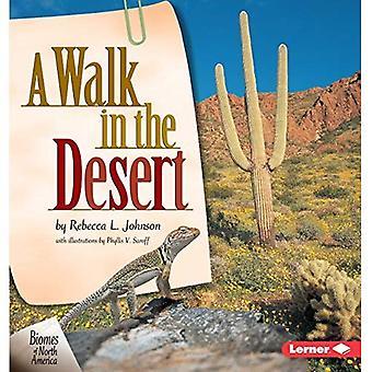 Une promenade dans le désert