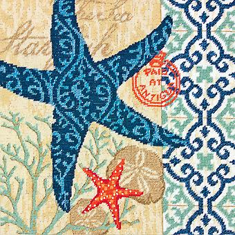 Starfish Needlepoint Kit 14