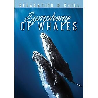 Slap af: Symfoni af hvaler [DVD] USA importerer