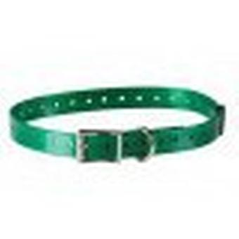 Num'axes Polyurethane Strap - Green Dark (Dogs , Collars, Leads and Harnesses , Leads)