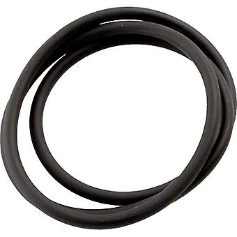 Jandy Zodiac Laars R0462700 Tank Top O-Ring Replacement for CS Series