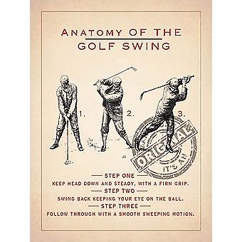 Anatomy Of A Golf Swing Metal Sign 400Mm X 300Mm