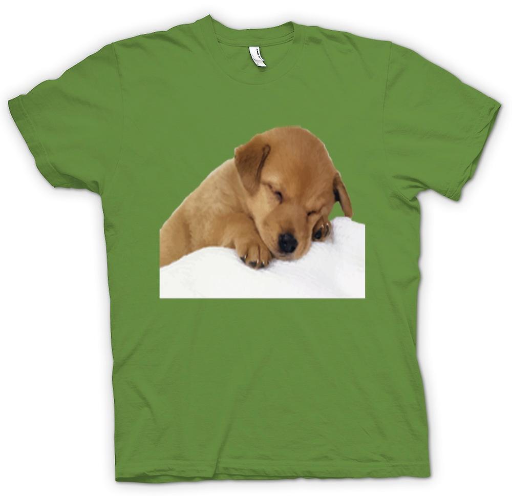 Mens t-skjorte-søte sovende hannhund