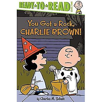 You Got a Rock, Charlie Brown! (Peanuts)