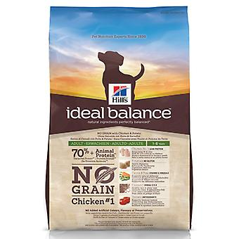 Hill's Ideal Balance No Grain Canine Adult (Dogs , Dog Food , Dry Food)
