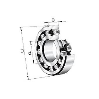 Nsk 1206J Double Row Self Aligning Ball Bearing