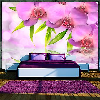 Wallpaper - Orchids in lilac colour