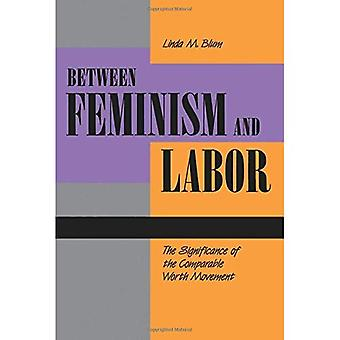 Between Feminism and Labor: The Significance of the Comparable Worth Movement