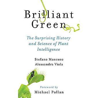 Vert brillant: La surprenante histoire et Science de l'Intelligence de la plante