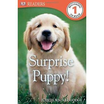 Surprise Puppy! by Judith Walker-Hodge - 9780756692957 Book