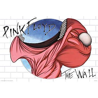 Poster - Pink Floyd - The Wall Mouth 24