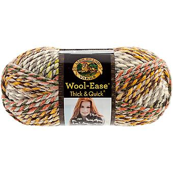 Wool-Ease Thick & Quick Yarn-Coney Island 640-612