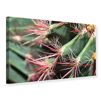 Lona impresión Cactus en flor