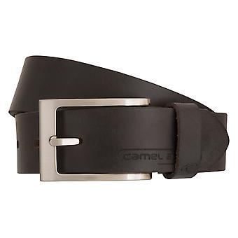 Camel active belts men's belts leather belt Brown 6809