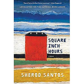 Square Inch Hours: Poems