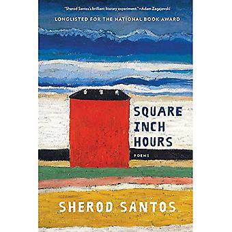 Pouce carré heures: poèmes