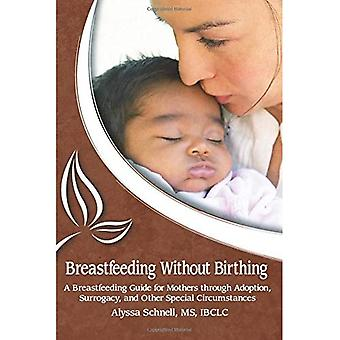 Breastfeeding Without Birthing: A Breastfeeding Guide for Mothers through Adoption, Surrogacy, and Other Special...