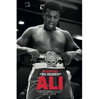 Poster - Studio B - Ali - Commenorative Belt 36x24