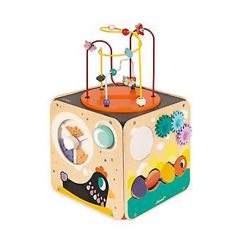Janod Multi-activity Cube