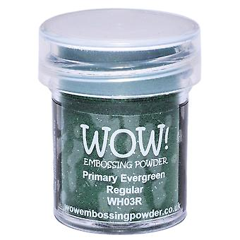Wow ! Embossage poudre 15Ml Evergreen Wow Wh03r
