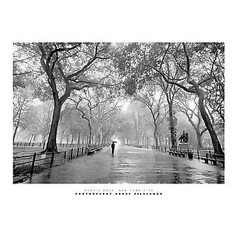 Poets Walk New York City Poster Print by Henri Silberman (19 x 15)
