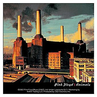 Pink Floyd-Tiere-Vinyl-Aufkleber 100 X 100 Mm