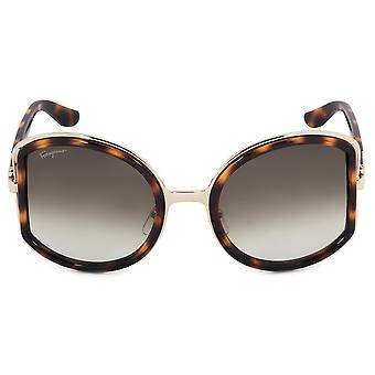 SF719S lunettes de soleil Salvatore Ferragamo ronde 238 52