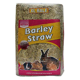 Bale Compressed Barley Straw Extra Large