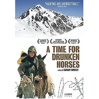 En tid för berusad hästar [DVD] USA import