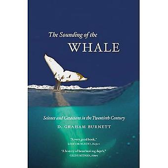 Lyden av hvalen: vitenskap og Cetaceans vinnenede
