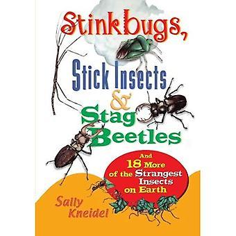 Stinkbugs, Stick insekter och Stag skalbaggar: och 18 mer av de märkligaste insekterna på jorden