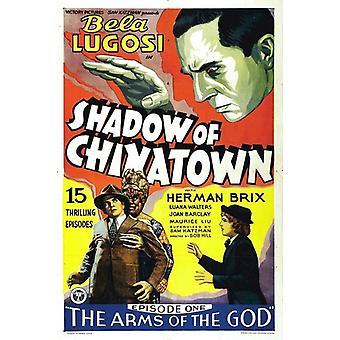 Sombra de importación de Estados Unidos Chinatown [DVD]