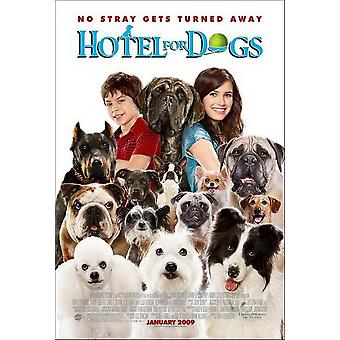 Hotel for Dogs Movie Poster (11 x 17)